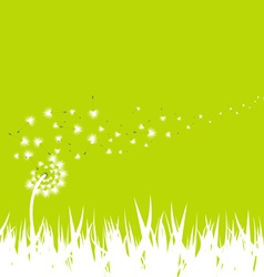 Spring with dandelion background vector