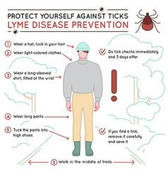 tick disease poster vector image