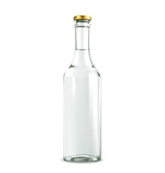 Alcohol drink in bottle vector image