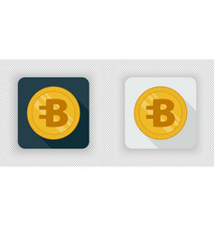 light and dark bytecoin crypto currency icon vector image vector image