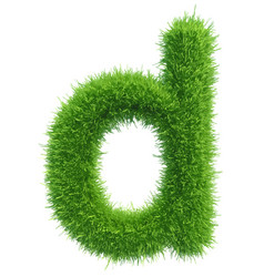 small grass letter d on white background vector image