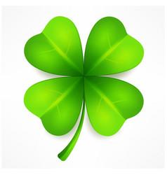 lucky clover leaf vector image