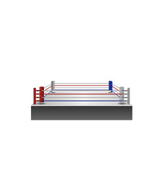 Boxing ring arena design illumination vector
