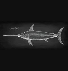 Chalk sketch of swordfish vector