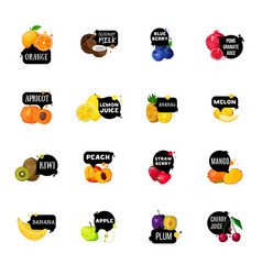 Fresh fruits labels polygonal icons collection vector