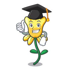 Graduation daffodil flower character cartoon vector