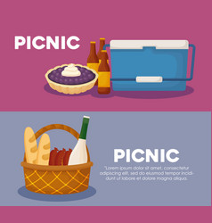 Picnic infographic design vector
