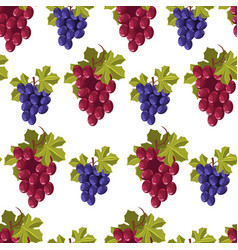 ripe grapes bunches seamless pattern fresh vector image
