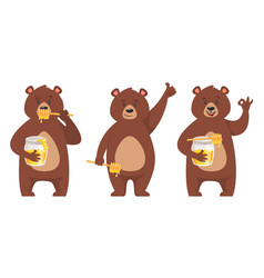 set of bear character vector image