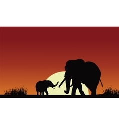 Silhouette of elephant with sun vector