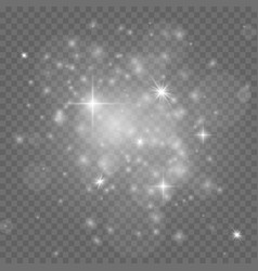 stardust white christmas isolated sparkles vector image
