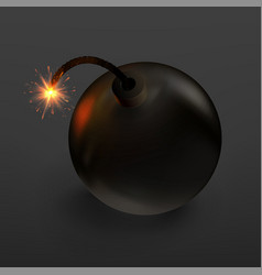 stock raster bomb on black background vector image