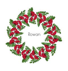 Wreath red rowan tree ornament twig of rowanberry vector