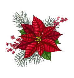 christmas decoration with red poinsettia vector image
