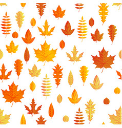 autumn composition seamless autumn maple leaves vector image