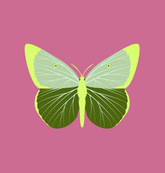 Colorful icon of butterfly isolated on pink vector