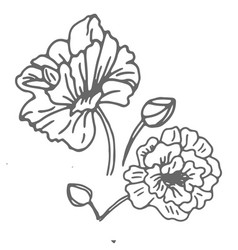 flower monochrome black and white isolated on vector image