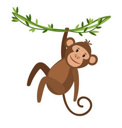 funny cartoon monkey icon vector image