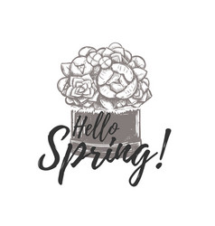 hello spring hand drawing vector image