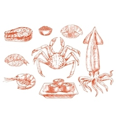Raw seafood cuisine crab and squid vector