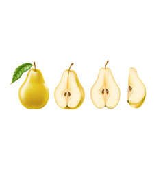 Realistic yellow ripe pear healthy food set vector