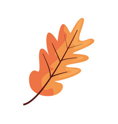 Tree leave color background decoration vector