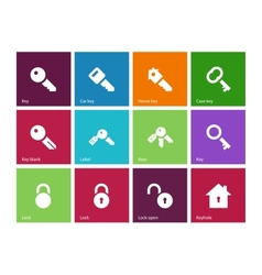 Key icons on color background vector image