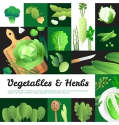 Organic Green Vegetables Banners Composition vector image vector image