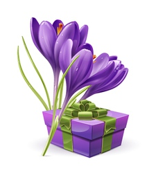 62sFlowers with a gift vector