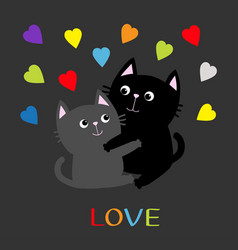 black gray cat hugging couple family rainbow vector image