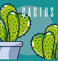 cactus house plants vector image