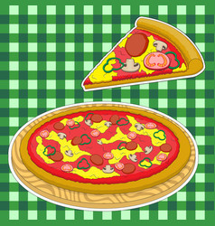 pizza and a slice of pizza on a green caged vector image