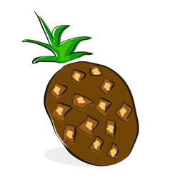 coconut clip-art on White background vector image vector image