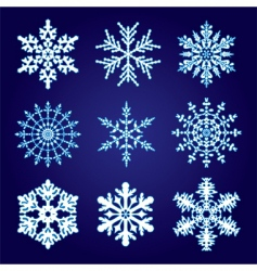 9 snowflakes vector image