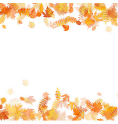 Autumn template with golden maple and oak leaves vector
