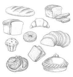 Bakery bread pastry sketch isolated icons vector