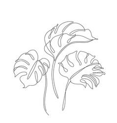 elegant continuous line drawing minimal art vector image