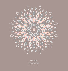 Hand drawn colorful floral mandala vector