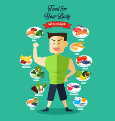Infographic of healthy food vector
