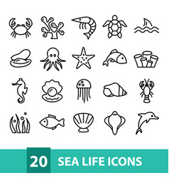 sea life icons collection vector image