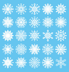 set with snowflakes on a white background winter vector image
