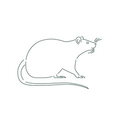 Simple white rat or mouse animal outline isolated vector