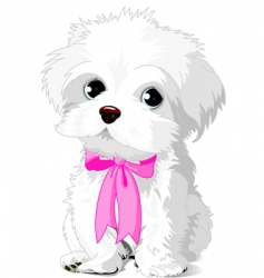 White puppy vector