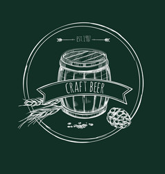 craft beer hand drawn template vector image