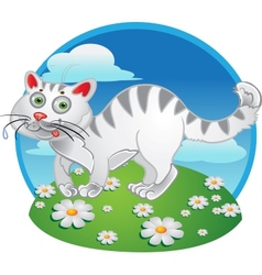 White fun cat on color background vector image vector image