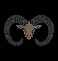 Ovis mouflon vector image vector image