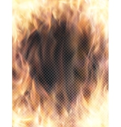 Realistic transparent fire flame banner vector image vector image