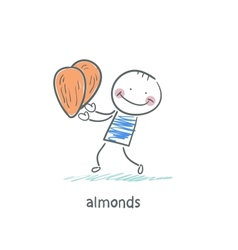 Almonds and people vector image