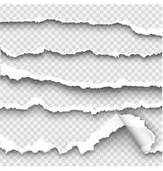 set of torn paper on transparent background vector image vector image