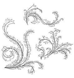 baroque pattern elements vector image